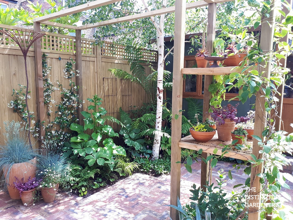 Shaded pergola area