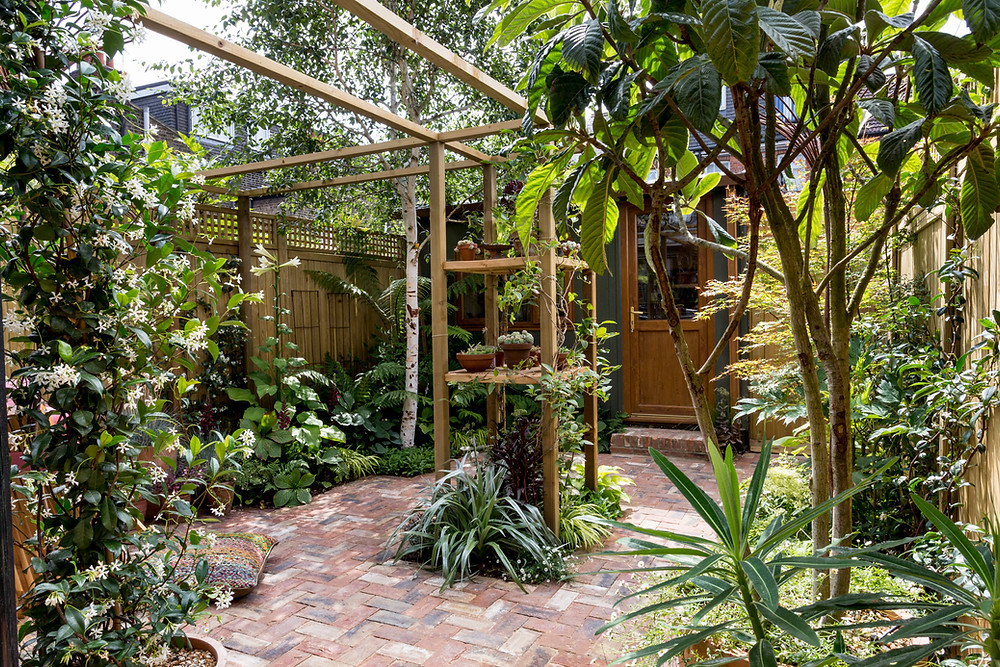Magical courtyard garden