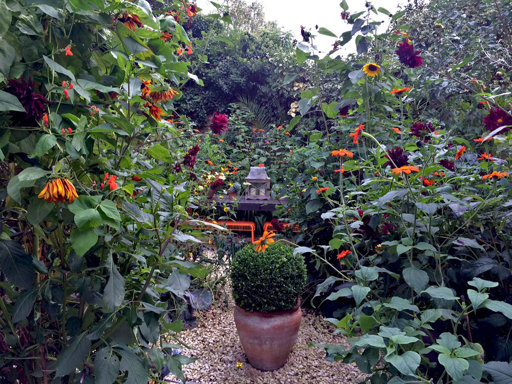 Parterre garden in October
