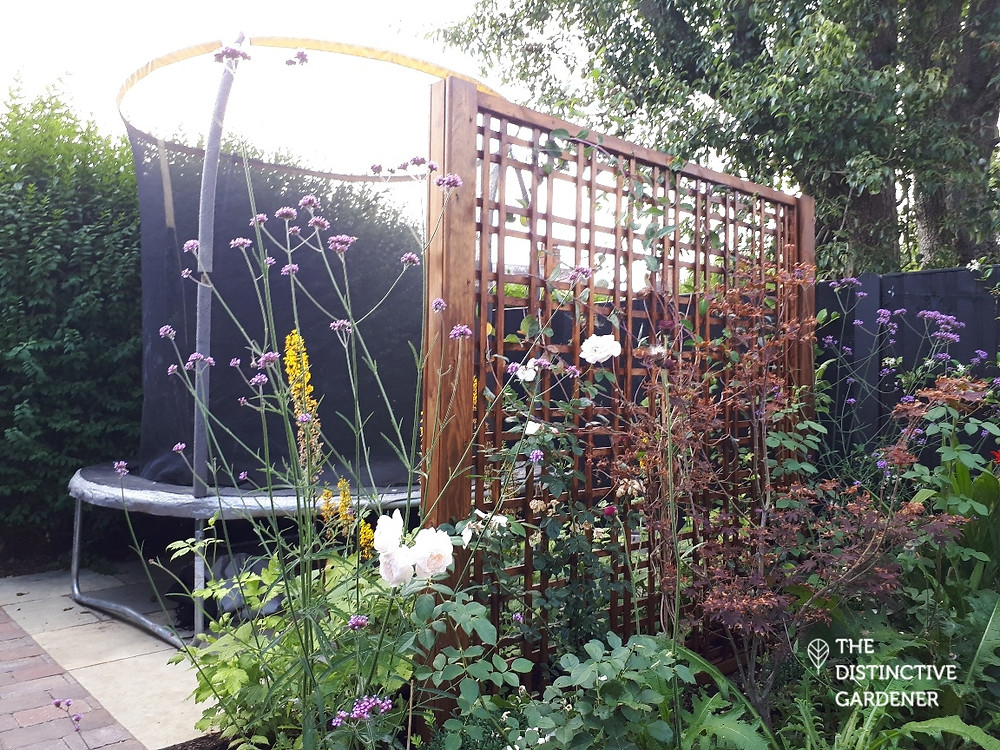 Secluded garden area, currently with trampoline