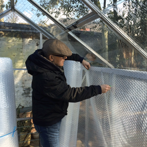 Lining the greenhouse with bubble wrap