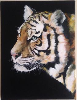 Tiger: III