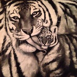 Tiger: IV