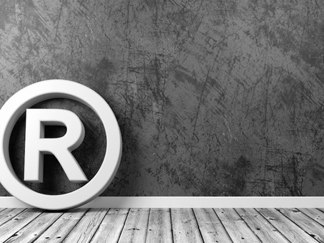 TRADEMARK LAW 101 Part 1 - TM BASICS FOR BUSINESS OWNERS