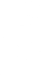logo--white--certified-b-corporation.png