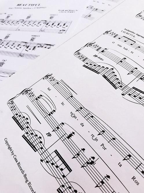 How to teach Musical Theatre