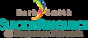 BSSRRN-logo-1.png
