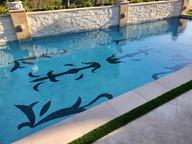 Laguna niguel swimming pool
