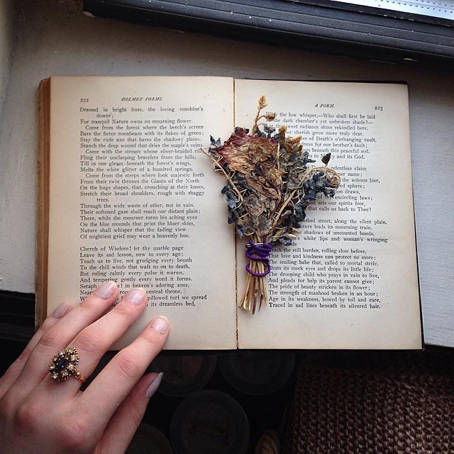 qrtny flower poems.jpg