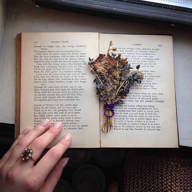 Paperback Books and Scattered Dreams