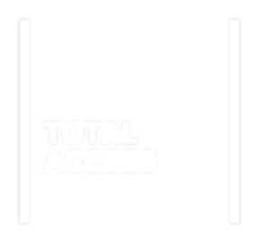 total access Option 3.png