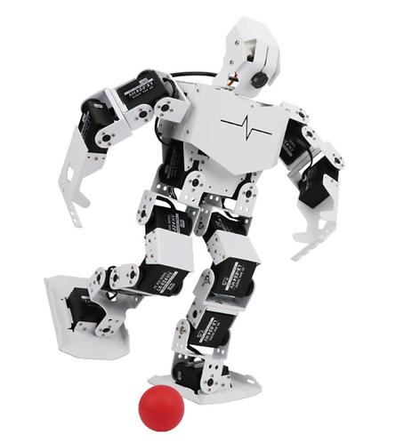 Raspberry Pi  人工智能AI視覺機器人