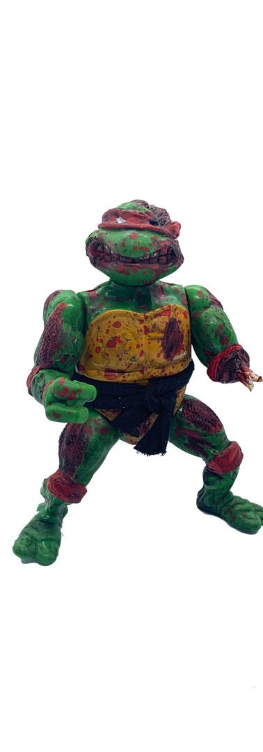 Zombie Raph Custom