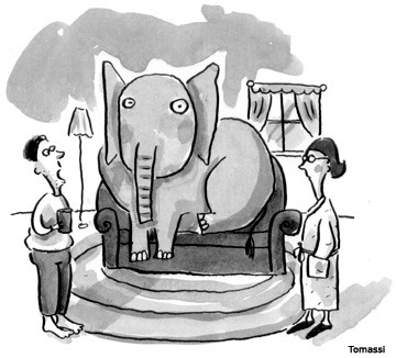 The elephant in the voluntary sector! Let's Talk about it…