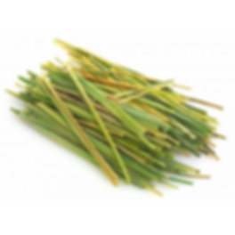 Plant Picture_Lemongrass.png