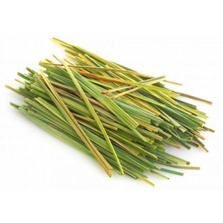 Plant Picture_Lemongrass.png