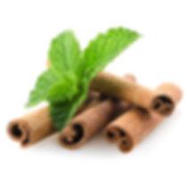 Cinnamon Leaf - Depositphotos_16267301_m