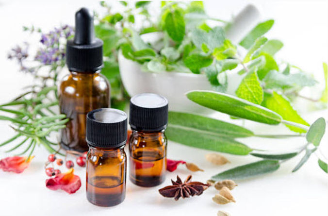 Herb and Oil photo.jpg