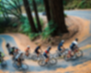 Cyclists on a group ride in the mountains. EPIC Cycling Team organizes road and mountain bike group rides for Utah team members based in Salt Lake and Utah Counties, and virtual cycling at Zwift.