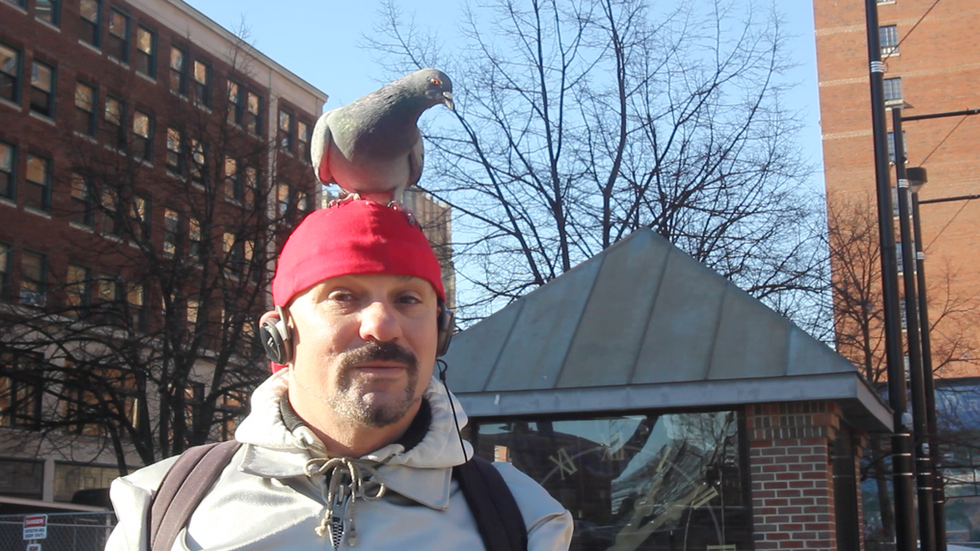 The Pigeon Man (2012)