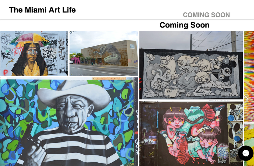 The Miami Art Life