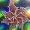 Thumbnail: Blossom