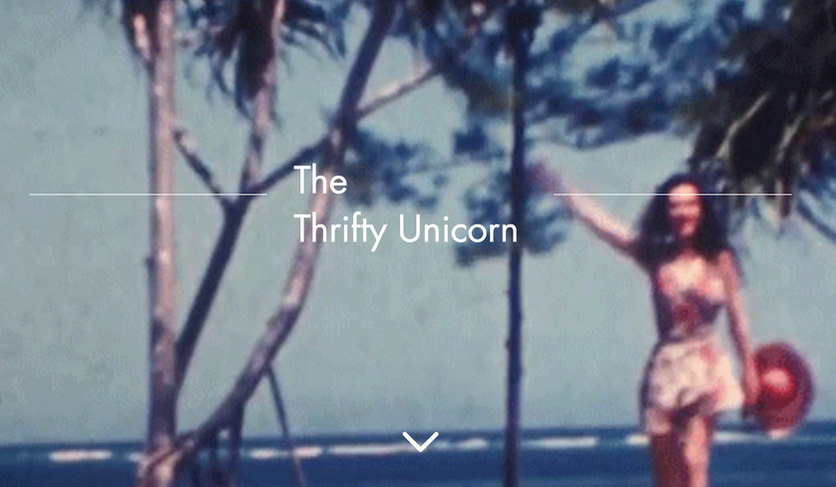 The Thrifty Unicorn