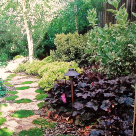Plants and a Pathway