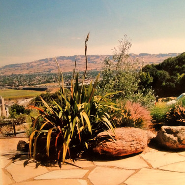 Flagstone Hardscaping Project