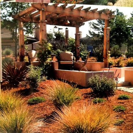 Landscaping with Pergola and Plants