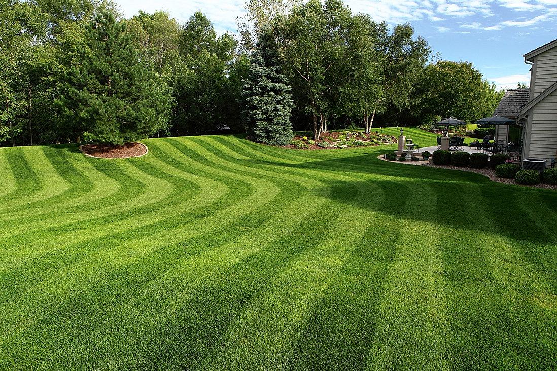 landscaping, grass, fertilizer