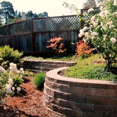 Retaining wall in Petaluma Backyard