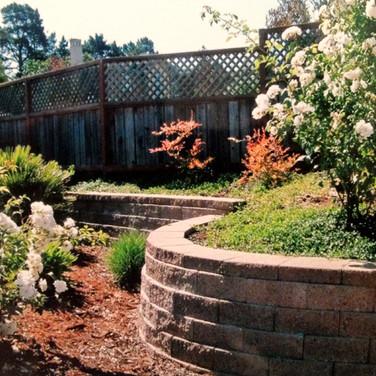 Retaining wall in Petaluma Backyard