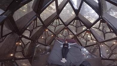 pinecone-treehouse-3-1024x576.jpg
