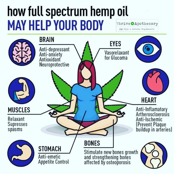 Helping your body with Hemp