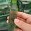 Thumbnail: Natural Stones Minerals Meditation Healing Crystals