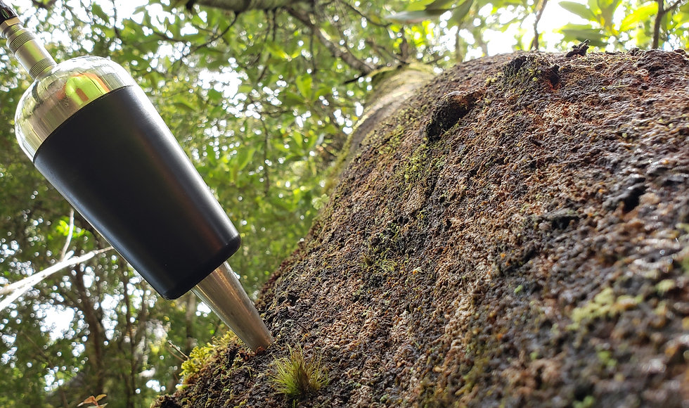 Ultrasonido como predictor de calidad de madera