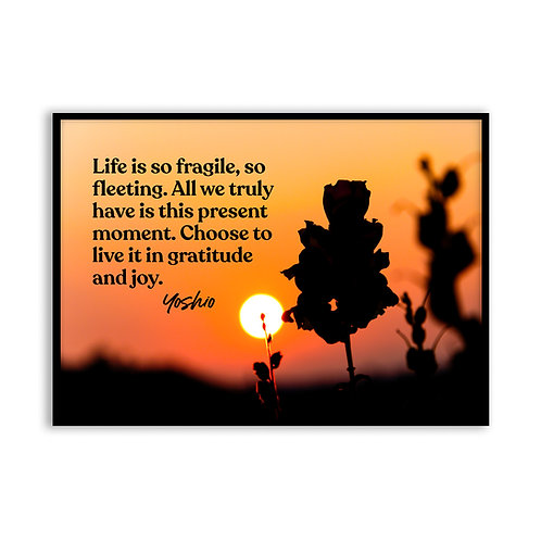 Life is so fragile...  - 5x7 Framed Art - Original Quote by Yoshio