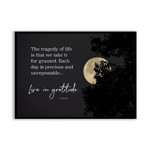 The tragedy of life is that... - 5x7 Framed Art - Original Quote by Yoshio