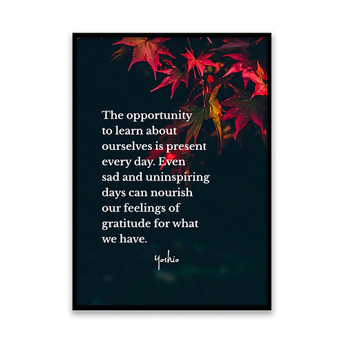 The opportunity to learn - 5x7 Framed Art - Original Quote by Yoshio