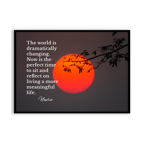 The world is dramatically changing...  - 5x7 Framed Art - Original Quote