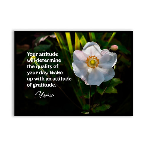 Your attitude will determine...  - 5x7 Framed Art - Original Quote by Yoshio