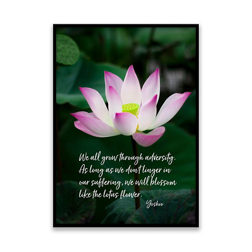 We all grow through adversity - 5x7 Framed Art - Original Quote by