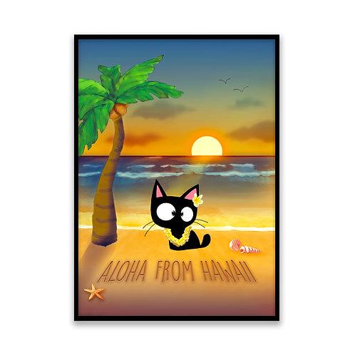 Sunset From Hawaii Cat - 5x7 Framed Art