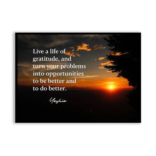 Live a life of gratitude...  - 5x7 Framed Art - Original Quote b