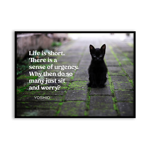 Life is short...  - 5x7 Framed Art - Original Quote by Yoshio
