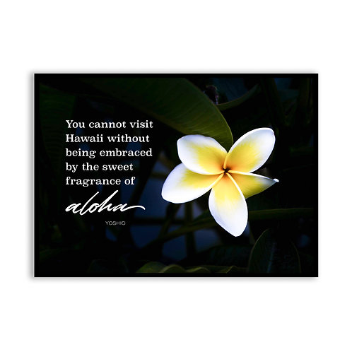 You cannot visit Hawaii without...  - 5x7 Framed Art - Original Quote by Yoshio