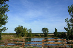 Lac-vu-terrasse
