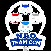 NAO TEAM 2-.png