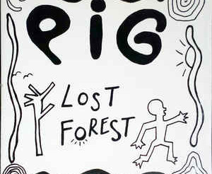 44. LOST FOREST
